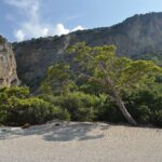 Pine Valley Hisaronu Tripadvisor