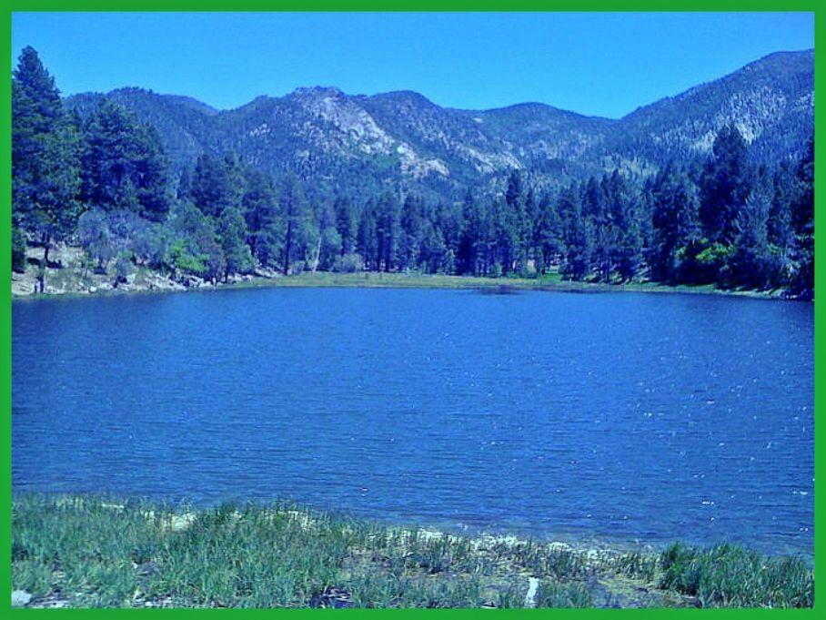 Pine Valley Utah   Outdoors adventure, Travel favorite ...