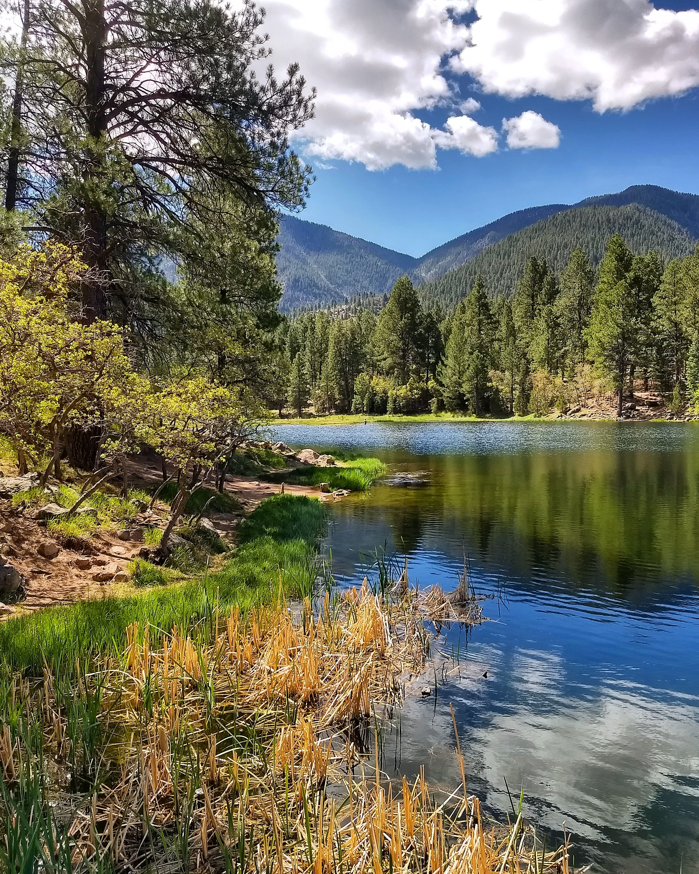 Another one from Pine Valley Utah (2450 3063) (OC) https ...