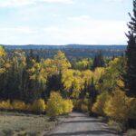 Oak Grove Campground Pine Valley Utah
