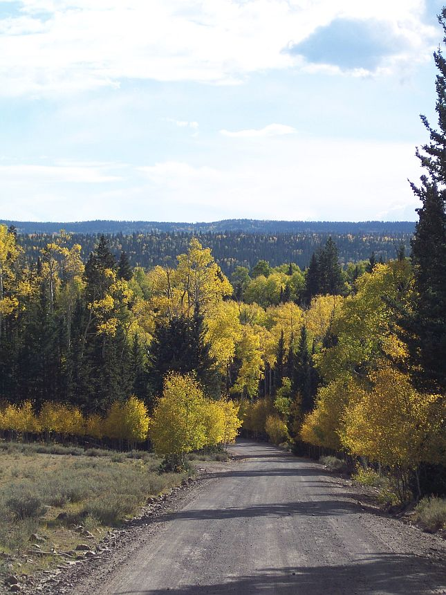 Fire managers lift fire restrictions for national parks ...