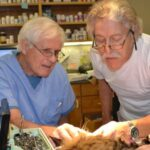 Pine Creek Veterinary Clinic Grass Valley