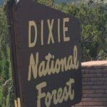 Pine Valley Utah Cabins