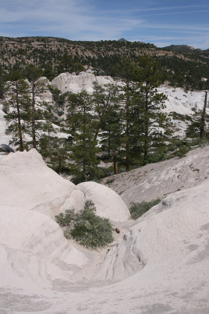 Forest Service considers Commercial Filming in Wilderness ...