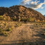 Homes For Sale Near Pine Valley Ca