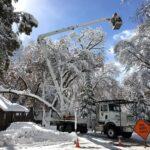 Yosemite Valley Upper Pines Campground Damage News 2019 Abc