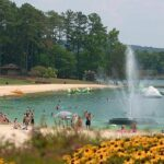 Things To Do In Pine Mountain Valley Ga