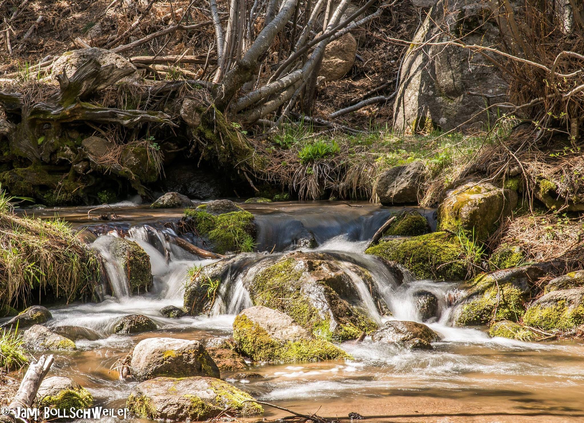 Pine Valley, Utah | Pine valley, Cozy cottage, Travel ...