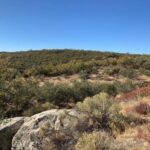 1280 Thing Valley Rd Lot 0 Pine Valley Ca 91962