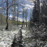 Pine Hollow Reservoir Tygh Valley