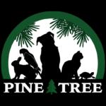 Pine Valley Animal London On