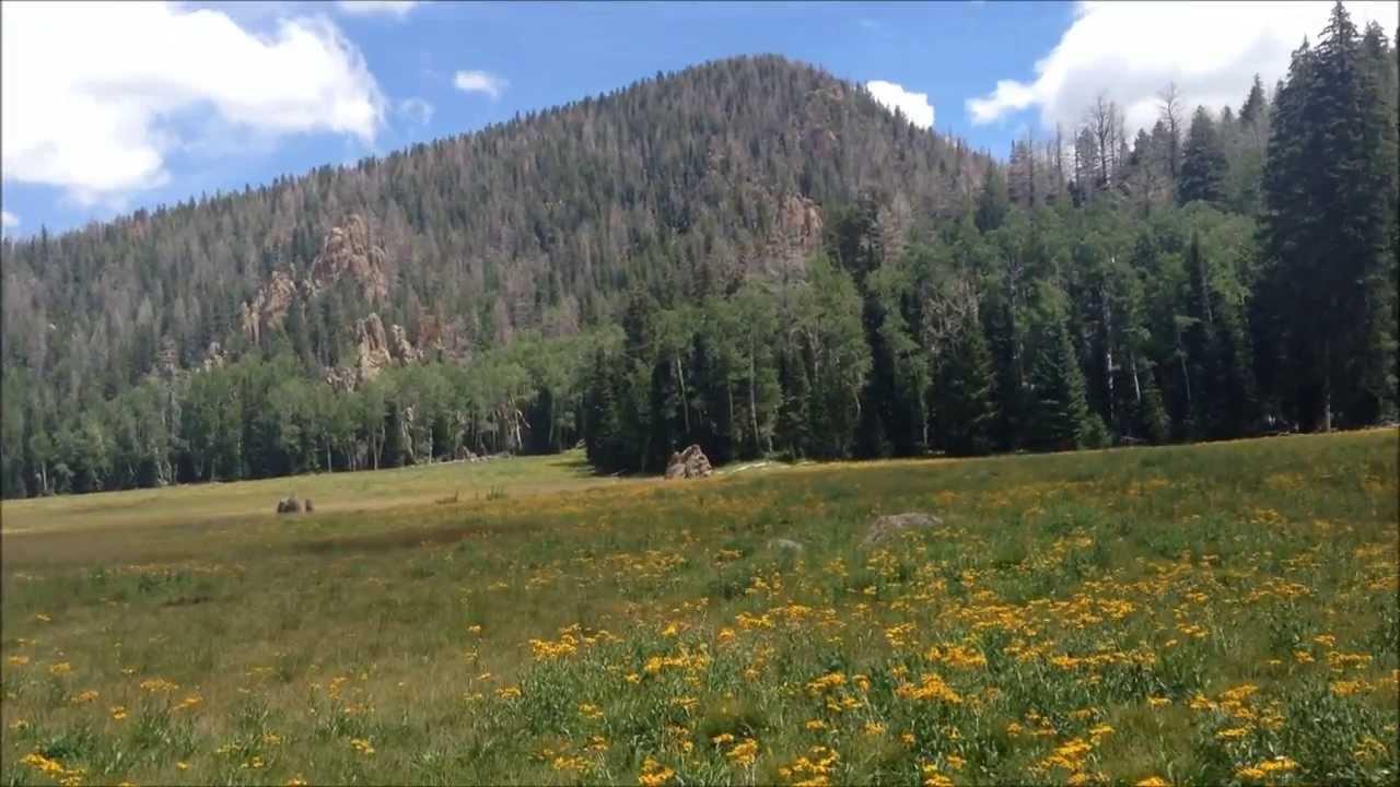 Pine Valley Mountains Utah - Hiking Signal Peak, Hidden ...