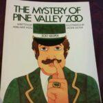 Ebay Pine Valley