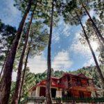 Pine Valley Resort Kasauli Review