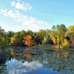 Pine Valley Nature Area Iowa