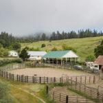 700 Acres Pine Valley Ca