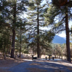 Pine Valley Recreation Area Pine Valley Recreation Area Road Pine Valley Ut