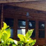 Pine Green Valley Lavender Lodge