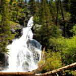 Pine Creek Paradise Valley Mt