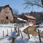 Pine Brook Valley Farm