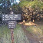 Pine Valley Gardner Peak Trail