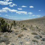Big Pine Road Death Valley