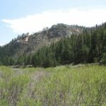A.j Pine Meadow Valley