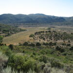 Pine Valley Utah Location