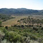 Pine Valley Mountain Elevation