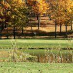 Pine Valley Golf Club Wadsworth Ohio
