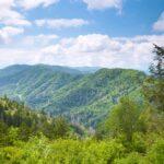Pine Valley Smoky Mountains