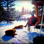 Flathead Valley Montana Lone Pine