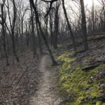 11 Pine Valley Trail Kennesaw Ga