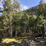 Pine Mountain Valley Trail