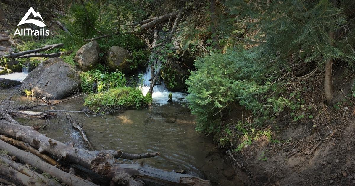 Best trails in Pine Valley Mountain Wilderness, Utah ...