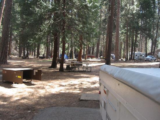 NORTH PINES CAMPGROUND (Yosemite National Park, CA ...
