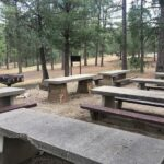 Picnic Area Pine Valley Ca
