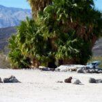 Big Pine To Saline Valley Warm Springs