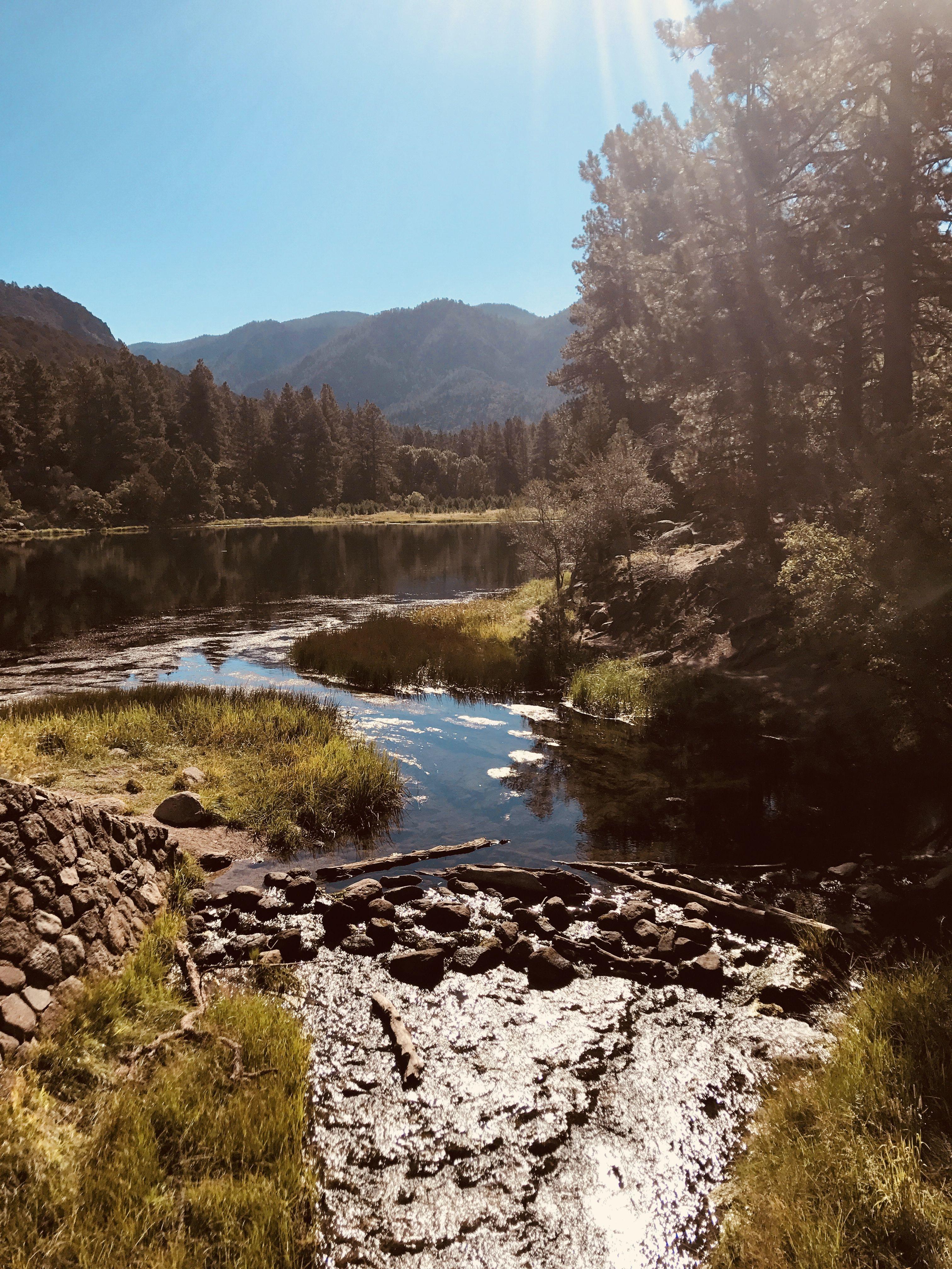 Pine Valley|Utah | Pine valley utah, Outdoor, Pine valley