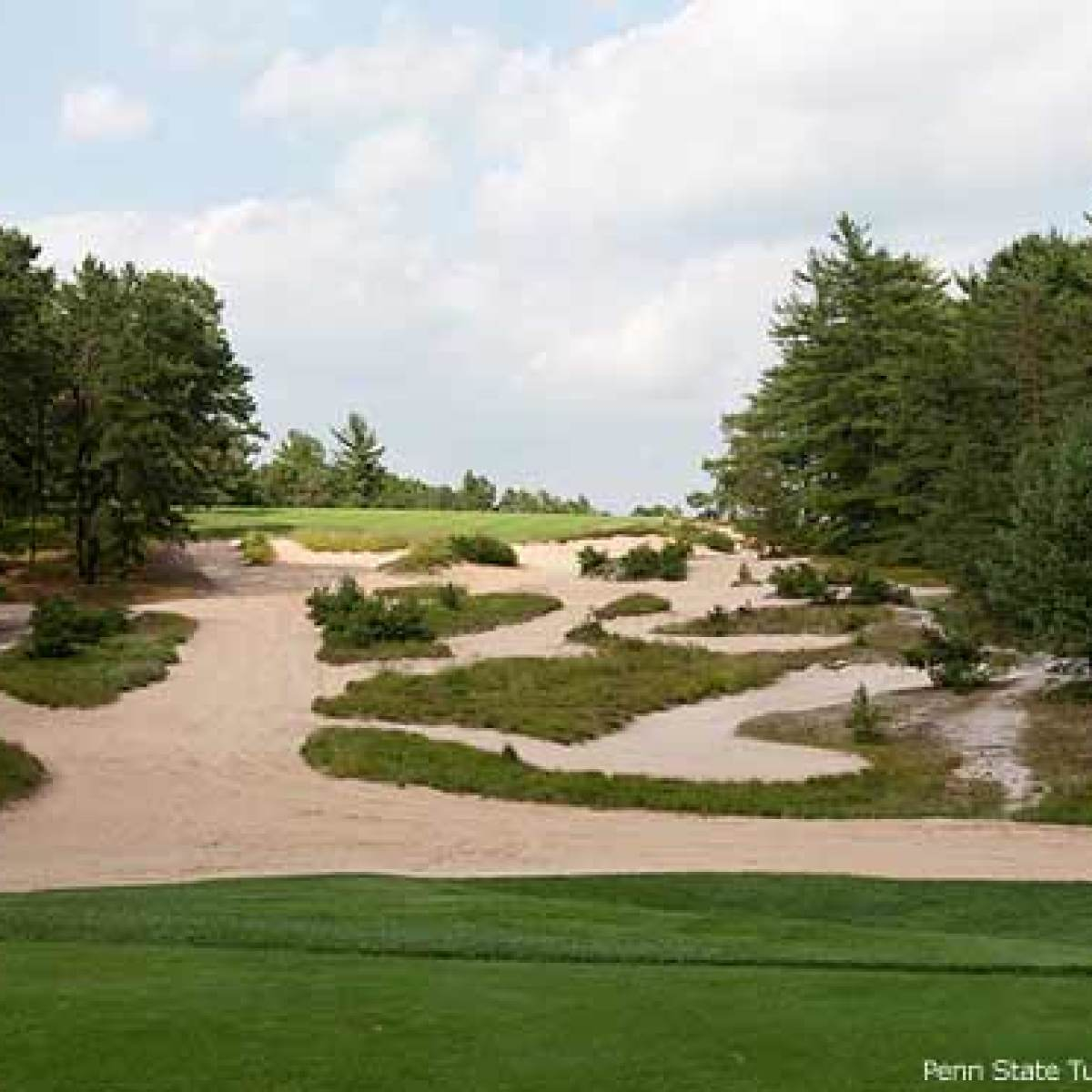 How to Get on New Jersey's Pine Valley Golf Course