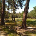 Pine Valley Golf Club E Atlantic Ave Pine Valley Nj