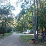 Bright Caravan Park Pine Valley