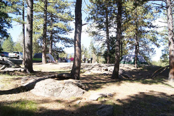 Pine Valley Recreation Area - Dixie National Forest