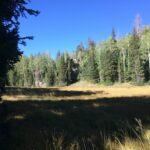 Bear Valley Trailhead Pine Valley