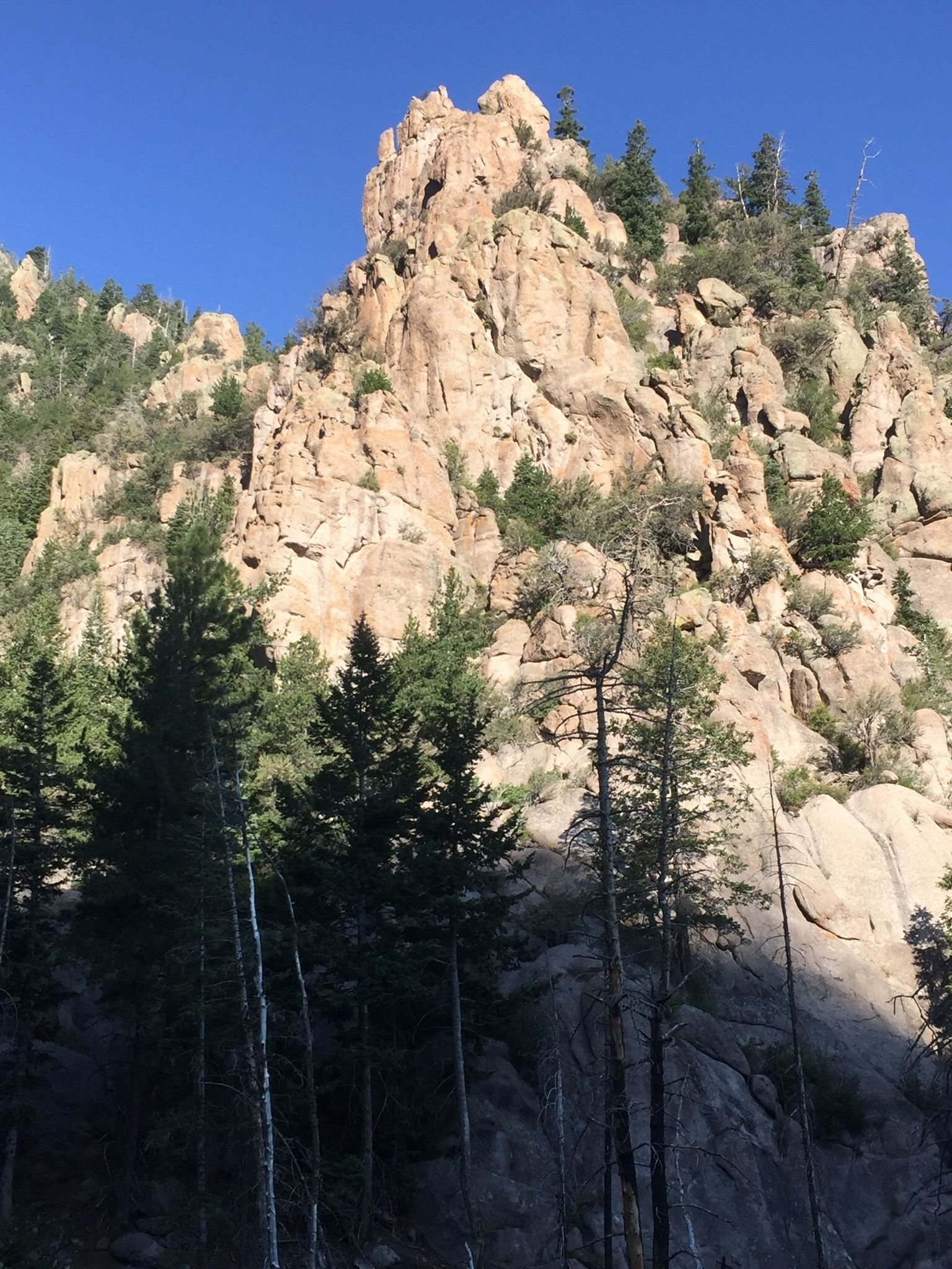 Best Trails near Pine Valley, Utah | AllTrails