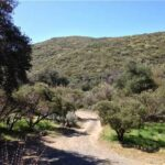 32355 Old Highway 80 Pine Valley California 91962