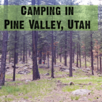 Pine Valley Recreation Area Entrance Fee