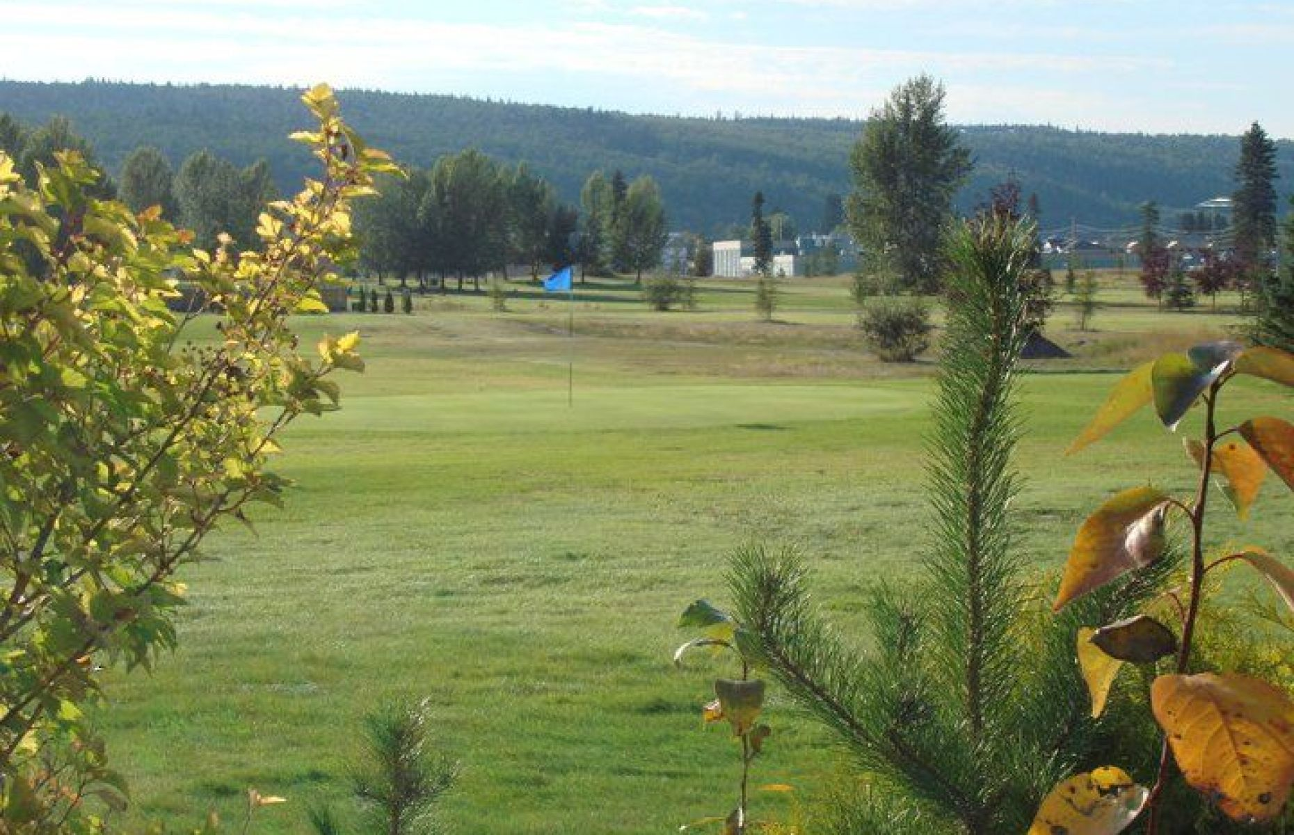 Pine Valley Golf Centre   The Golf Critique