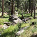 Pine Valley Equestrian Campground Utah