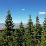 For Sale By Owner Pine Valley Utah